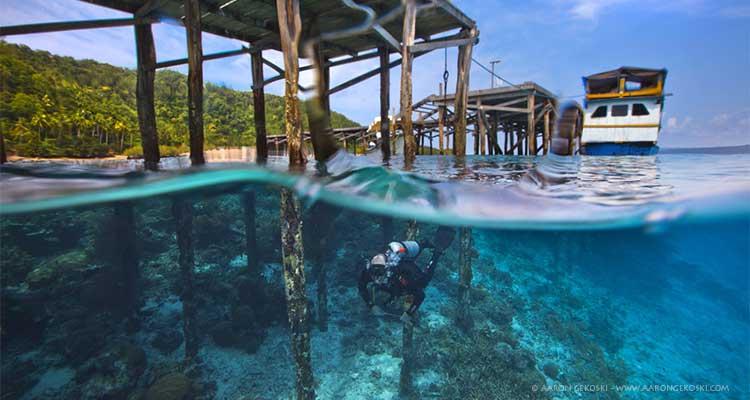 Diving papua diving resorts raja ampat indonesia - Dive resort raja ampat ...