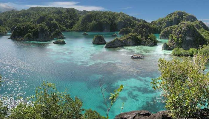 Excursions papua diving resorts raja ampat indonesia - Raja ampat dive resort ...